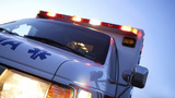 Man hospitalized after tree falls on him in Darlington County
